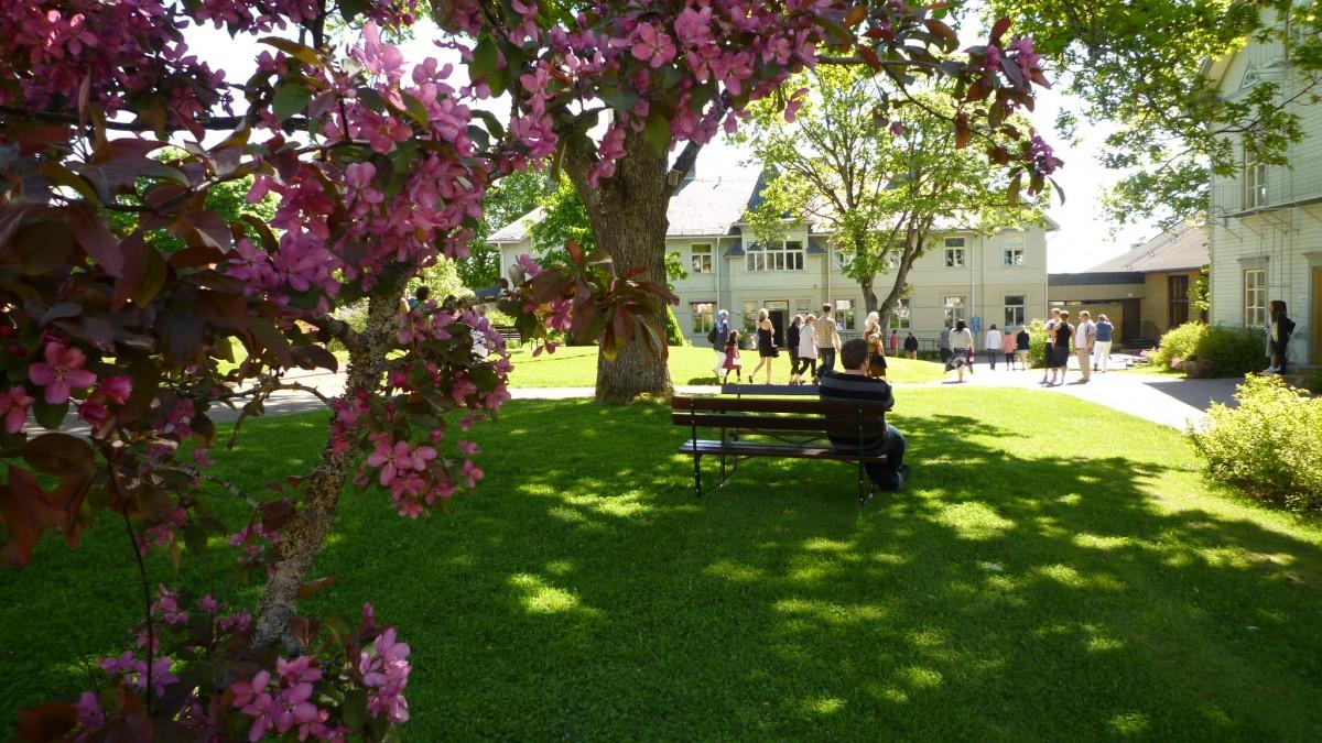 Molkoms folkhögskolas skolgård en sommardag